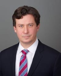 Top Rated Business Litigation Attorney in New York, NY : Robert S. Landy