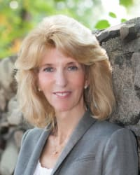 Top Rated Family Law Attorney in Bloomfield Hills, MI : Susan E. Cohen