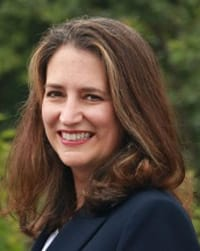 Top Rated Family Law Attorney in Lemoyne, PA : Ann V. Levin