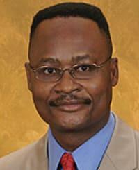 Emmanuel O. Iheukwumere